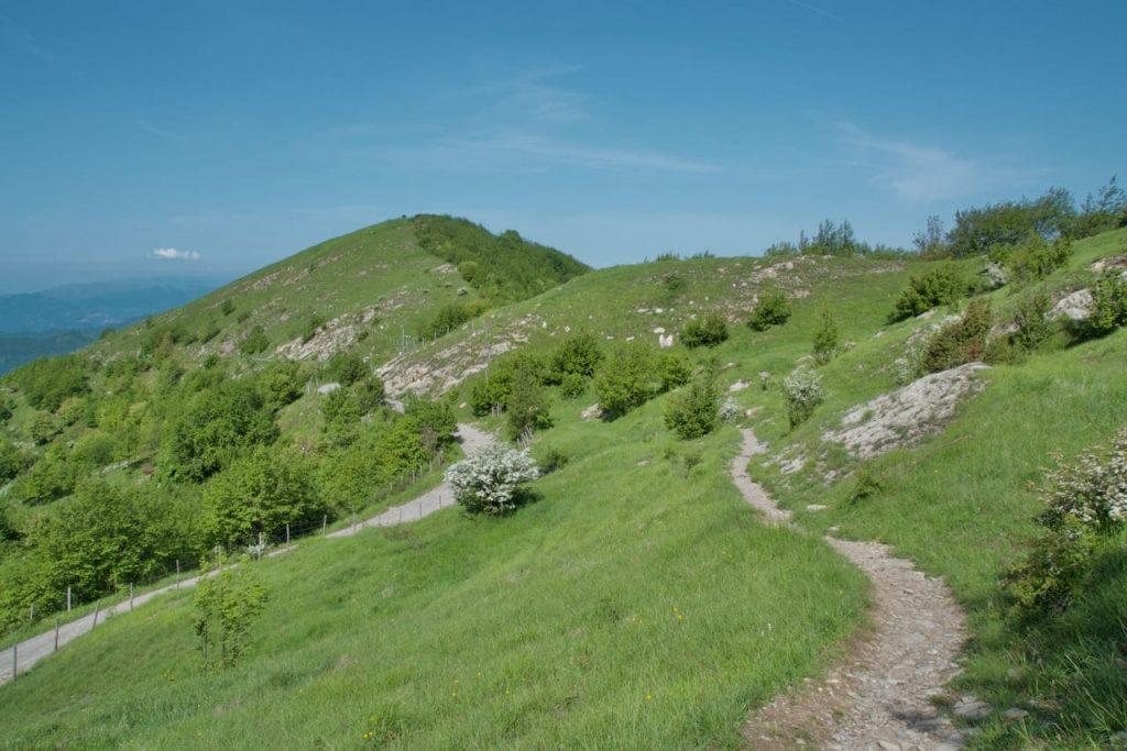 Escursione sul Monte Antola